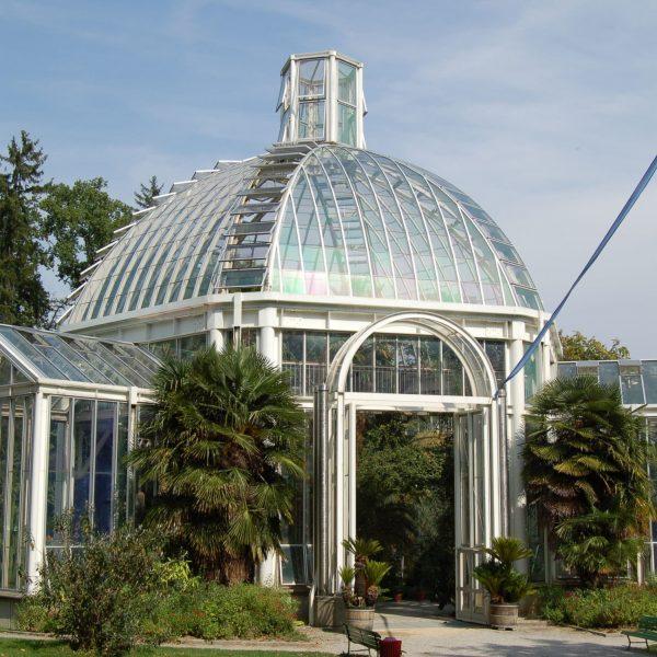 Botanical_Garden_Geneva_2006_804